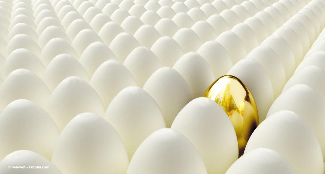 Eine klare Positionierung – Das goldene Ei