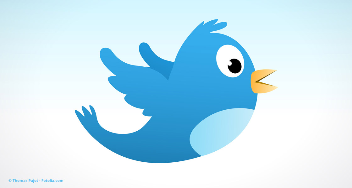 Blauer Twitter-Vogel © Thomas Pajot - Fotolia.com