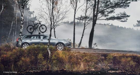 Ein Volvo V90 mit Fahrrad auf dem Dach fährt auf einem Waldweg © Volvo Car Group